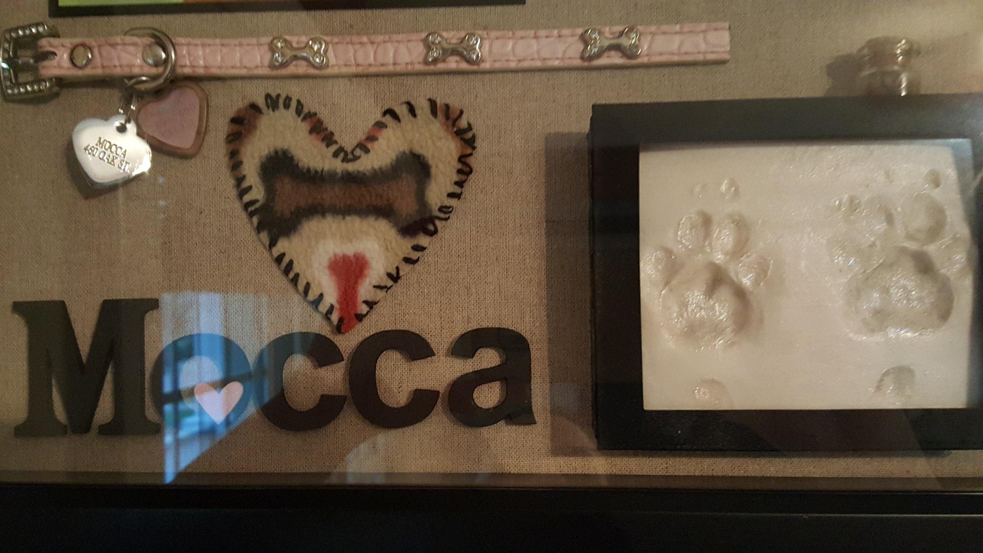 Vicki-Mocca shadow box2
