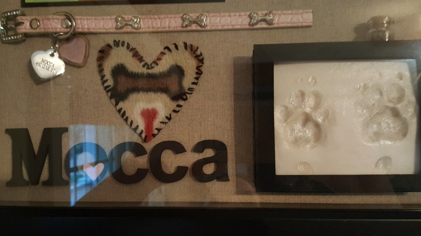 Vicki-Mocca shadow box2